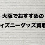 大阪ディズニーグッズ